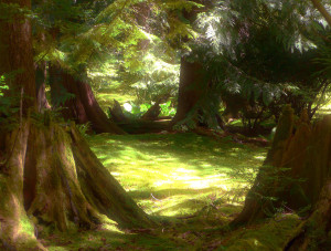 fantasy-moss-garden-lori-seaman